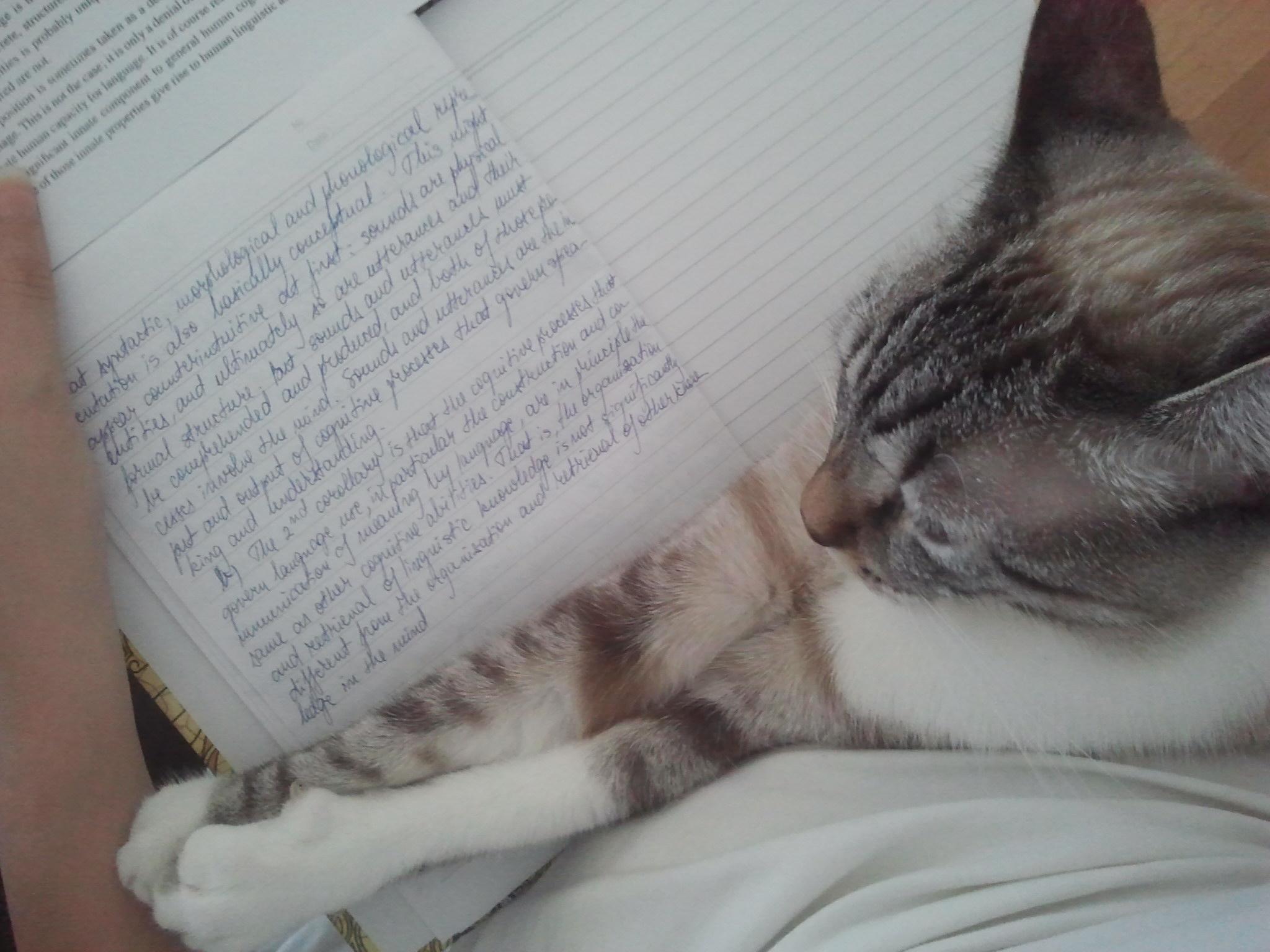 Și așa studiez. :)