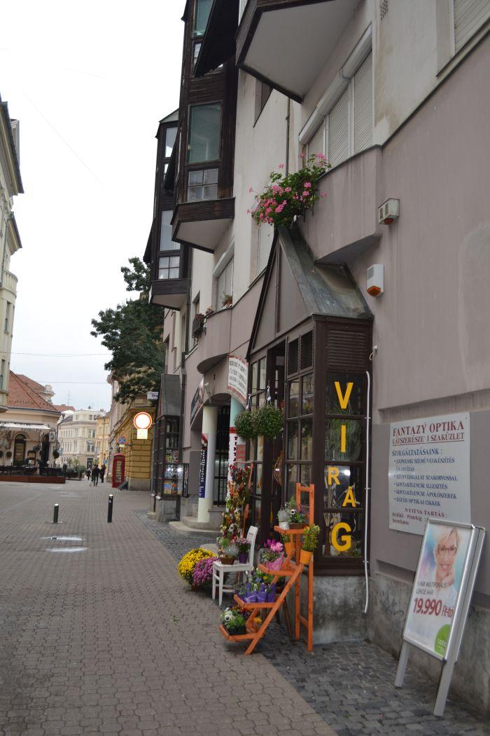 florarie inb Szeged